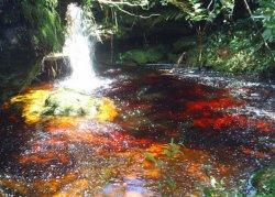 pousada com cachoeira em minas gerais